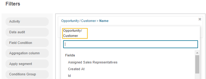 Filtering the opportunity record by customer name