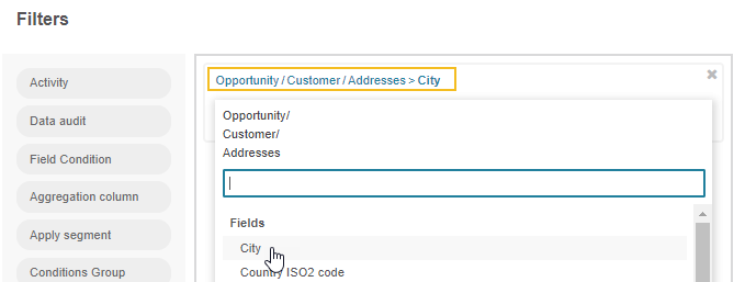 Filtering the opportunity record by customer name and address